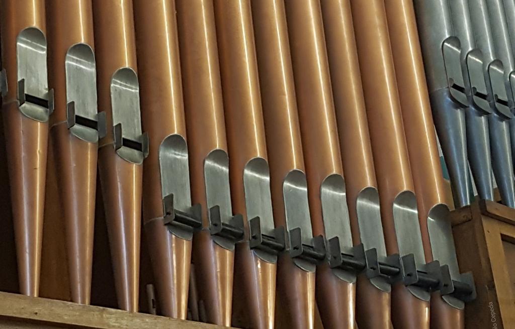 Un órgano de tubos para El Carmen de Indautxu